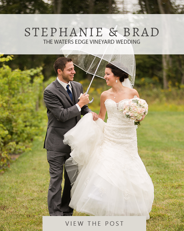 Brad and Stephanie Roberts Wedding Music Video Montage